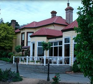 Central Springs Inn - Accommodation Cooktown