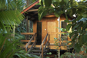 Cape Trib Beach House - Accommodation Cooktown