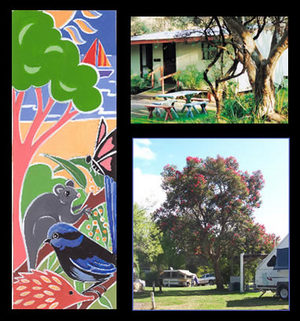 Bushland Cabins - Accommodation Cooktown