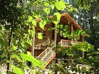 Rivers Edge Rainforest Retreat - Accommodation Cooktown