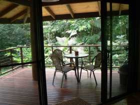 Cape Trib Exotic Fruit Farm Bed and Breakfast - Accommodation Cooktown