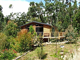 Southern Forest Accommodation - Accommodation Cooktown