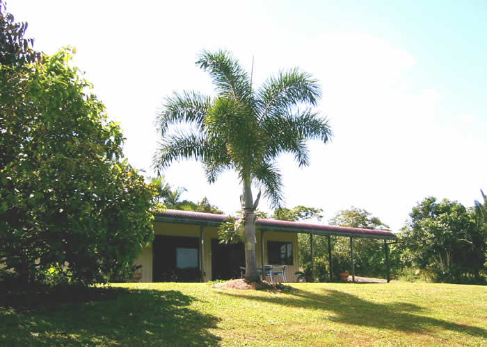 Daintree Mountain View Retreat and Vanilla Beans - Accommodation Cooktown
