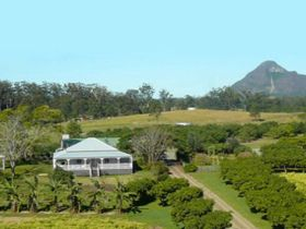 Mango Hill Farm - Accommodation Cooktown