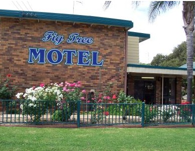 Fig Tree Motel - Accommodation Cooktown