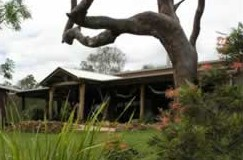 The Hollow Log Country Retreat - Accommodation Cooktown