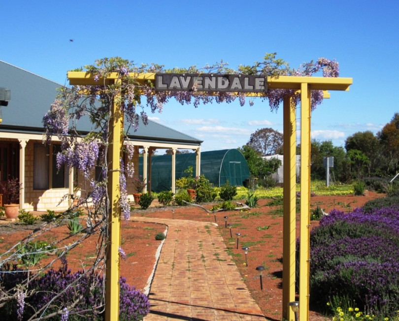 Lavendale Farmstay and Cottages - Accommodation Cooktown