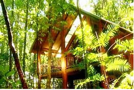 The Canopy Treehouses - Accommodation Cooktown