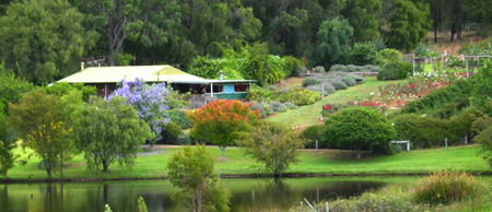 Lavender and Berry Farm - Accommodation Cooktown