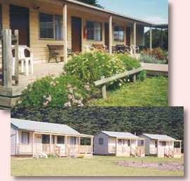 Twelve Apostles Motel and Country Retreat - Accommodation Cooktown