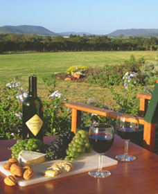 Tranquil Vale Vineyard Cottages - Accommodation Cooktown