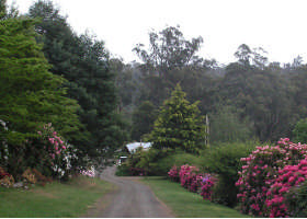 Mountain Rivers Lodge - Accommodation Cooktown