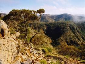 Bendleby Ranges - Accommodation Cooktown