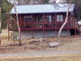 Ivybrook Vineyard Cottage - Accommodation Cooktown
