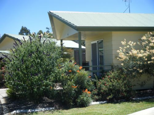 Pepper Tree Cabins - Accommodation Cooktown