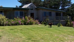 Clifton Beach Lodge - Accommodation Cooktown