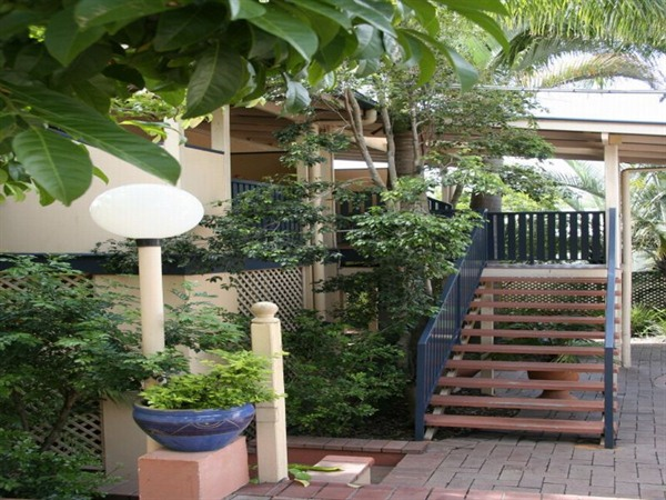 City Palms Motel - Accommodation Cooktown