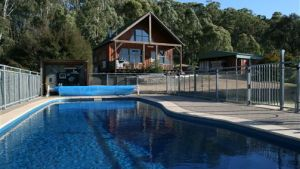 Karoonda Olive Grove Retreat at Mt Buffalo Olives - Accommodation Cooktown