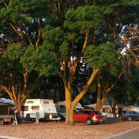 Queen Victoria Jubilee Park - Accommodation Cooktown