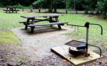 Bellbird campground - Accommodation Cooktown