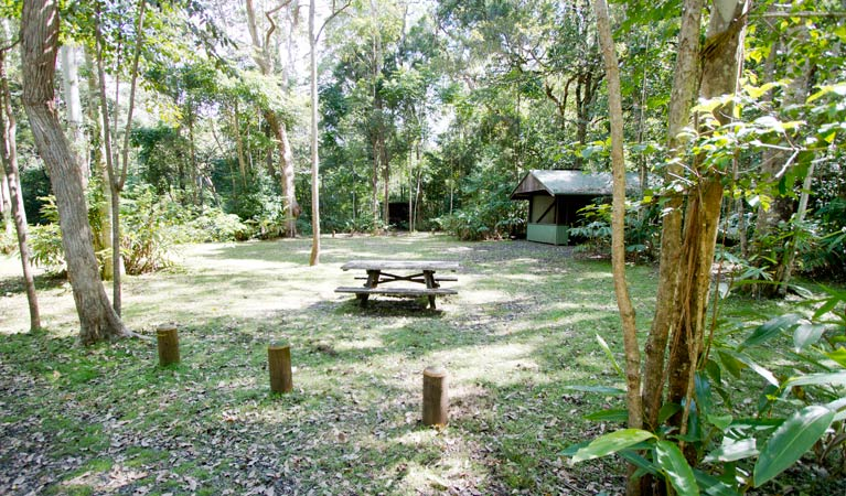 Iron Pot Creek campground - Accommodation Cooktown