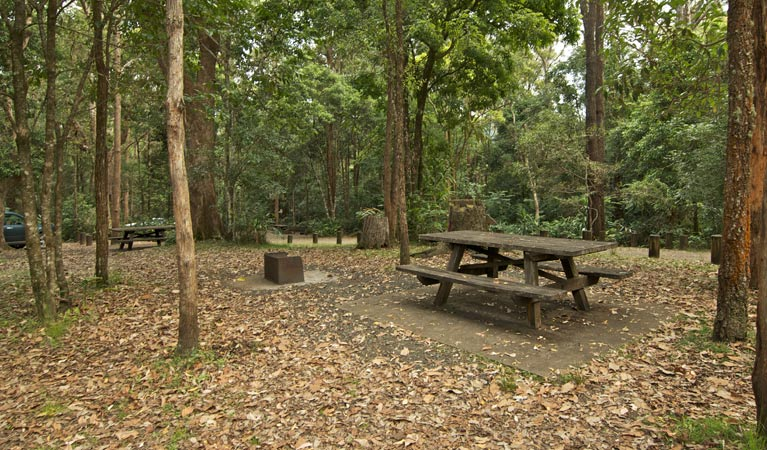 Sheepstation Creek campground - Accommodation Cooktown