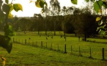 Stone Cottage Mittagong - Accommodation Cooktown