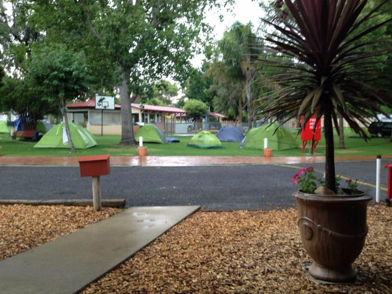 Young Caravan Tourist Park - Accommodation Cooktown