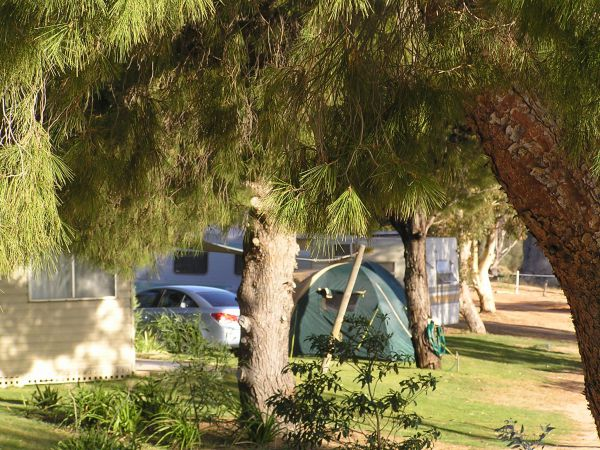 Barmera North Lake Caravan Park - Accommodation Cooktown
