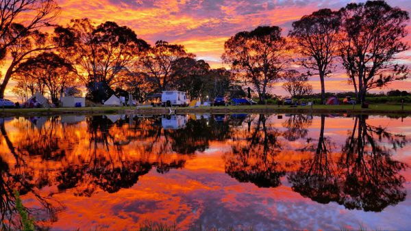 Coonawarra Bush Holiday Park - Accommodation Cooktown
