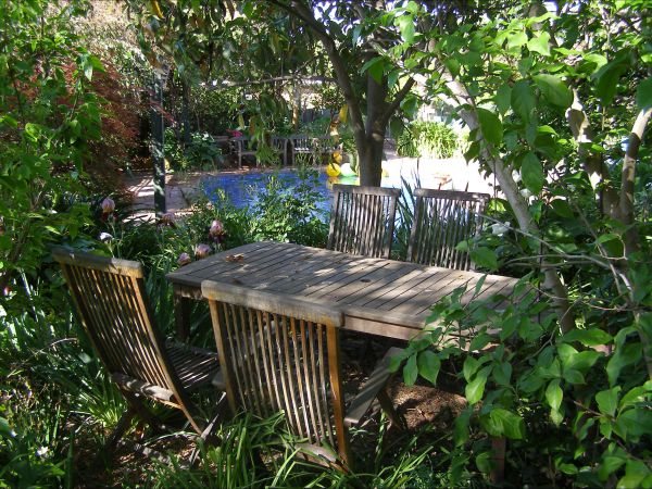 Palm Haven Bed And Breakfast - Accommodation Cooktown