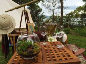 Wingtons Glamping Clarence Point - Accommodation Cooktown