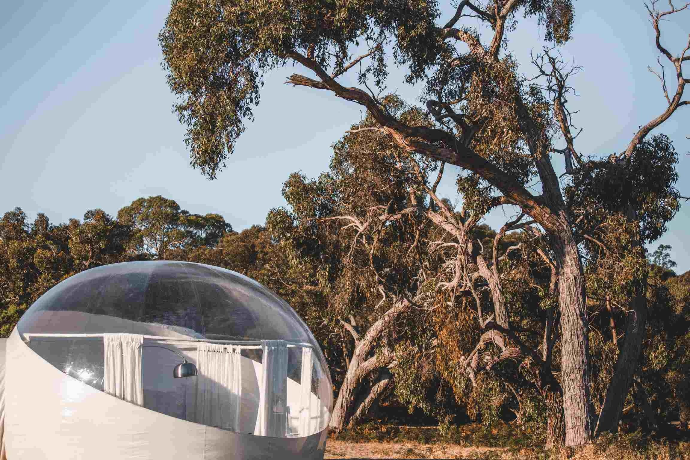 Coonawarra Bubble Tents - Accommodation Cooktown