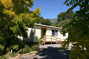 Millicent Hillview Caravan Park - Accommodation Cooktown