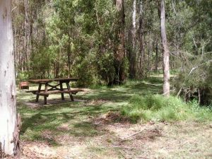 Mulloon Creek campground - Accommodation Cooktown
