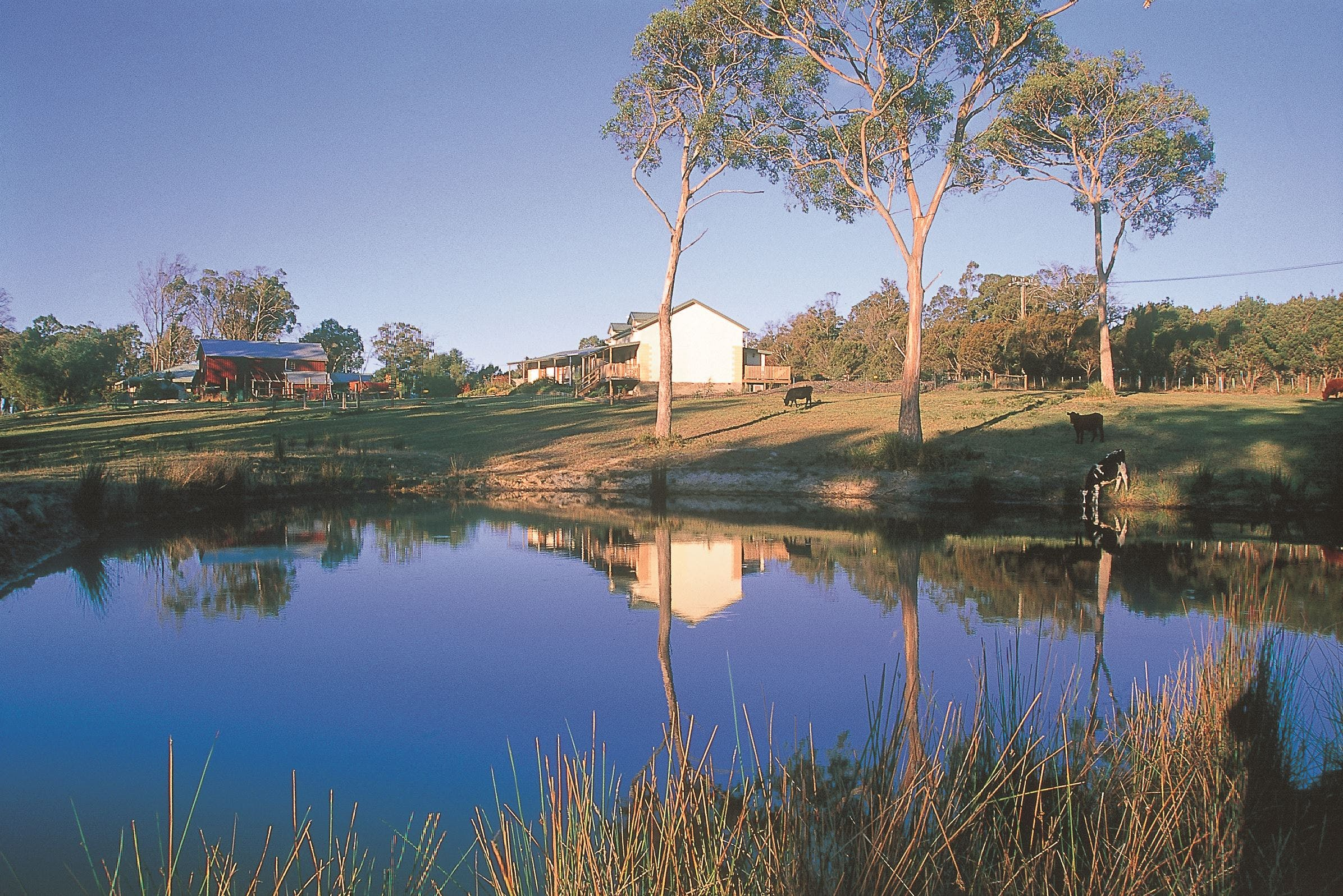 Platypus Park Country Retreat - Accommodation Cooktown