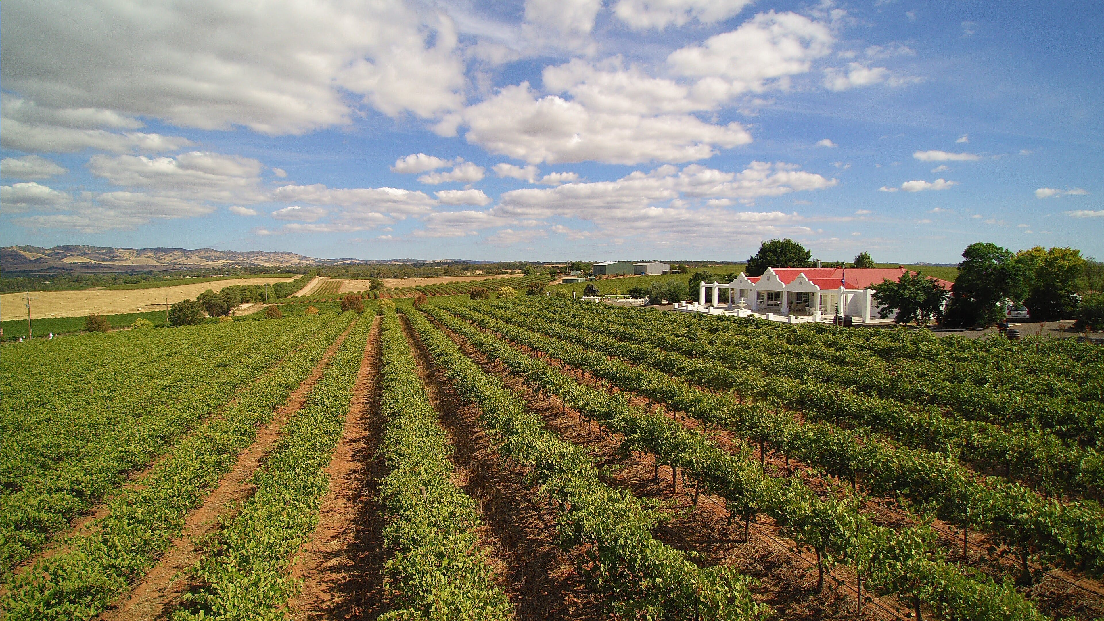 1837 Barossa Luxury Vineyard Cottages - Accommodation Cooktown