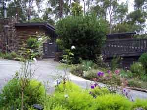 Sunway Farm B and B and Tours - Accommodation Cooktown