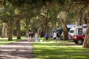 Beachfront Holiday Park - Accommodation Cooktown