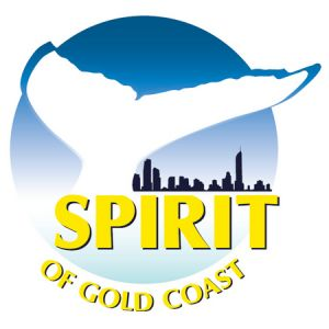 Spirit of Gold Coast Whale Watching - Accommodation Cooktown