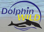 Dolphin Wild - Accommodation Cooktown