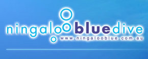 Ningaloo Blue Dive - Accommodation Cooktown