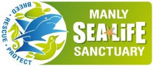 Manly SEA LIFE Sanctuary - Accommodation Cooktown