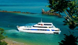 Queensland Day Tours - Accommodation Cooktown