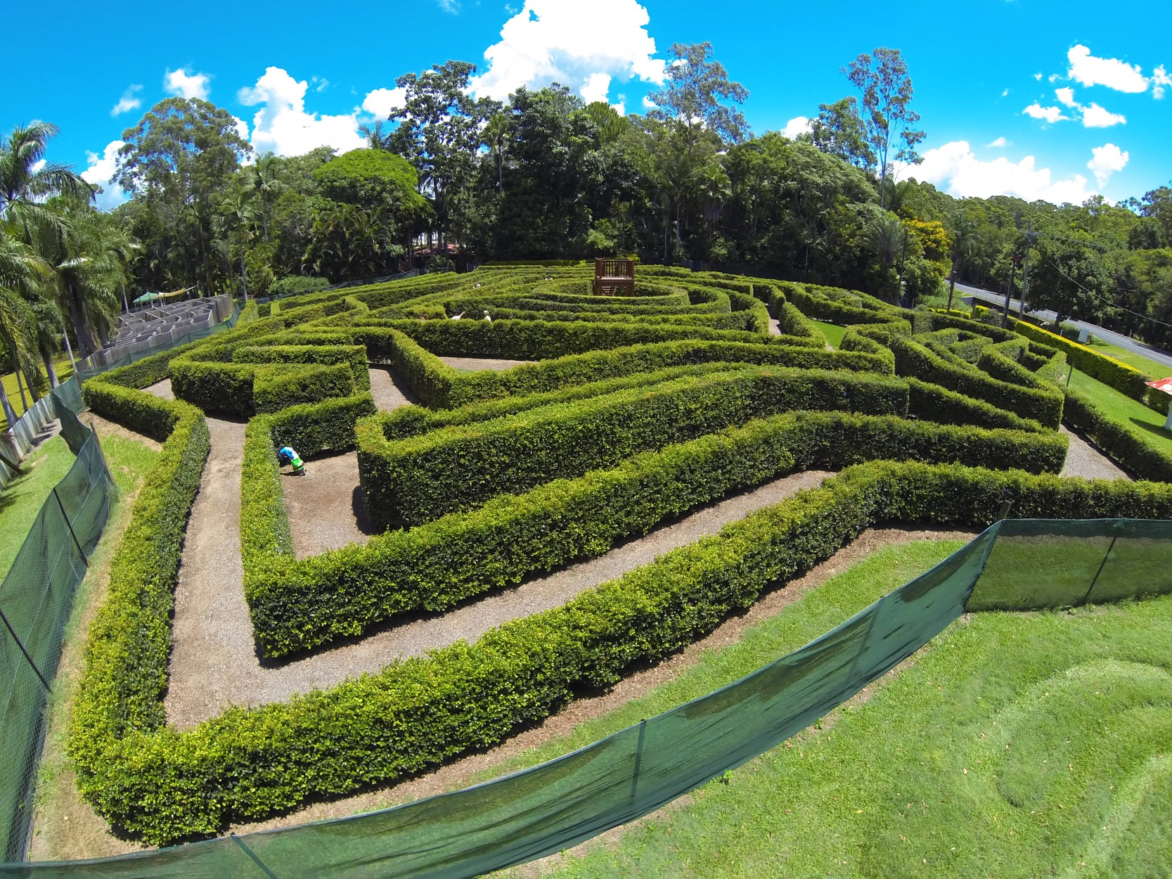 Bellingham Maze - Accommodation Cooktown