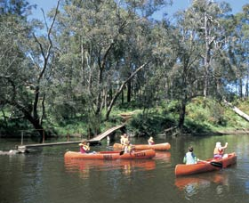 Blackwood River - Accommodation Cooktown