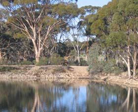 Merredin Railway Dam - Accommodation Cooktown