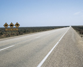 Eyre Highway - Accommodation Cooktown