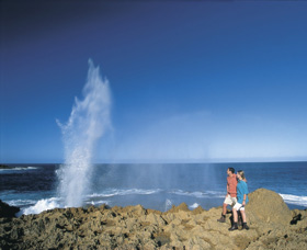 The Blowholes Carnarvon - Accommodation Cooktown
