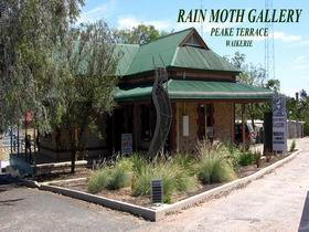 Rain Moth Gallery - Accommodation Cooktown